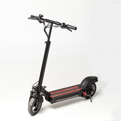 Electric Scooter X4