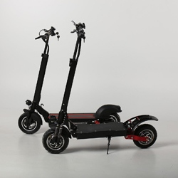 Electric Scooter X5
